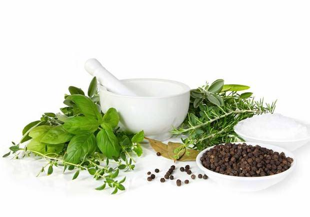 Лечение на гъбички с билки