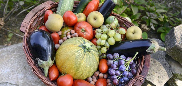 есенна диета